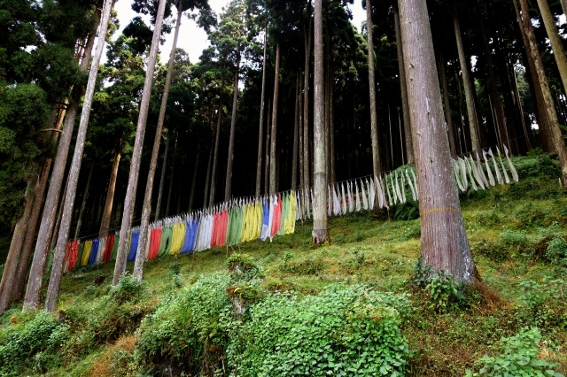 A particularly sinister congregation of prayer flags